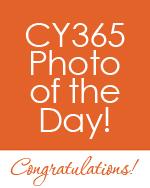 CY365POTD award